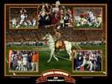 florida state pitts print