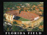 floridafieldprint