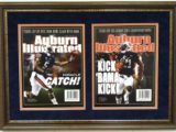 auburn illustrated double framed