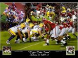 tiger take down REVISED