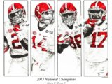2015NationalChampionstimprint