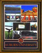 AuburnCollageFramed.jpg