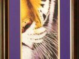 LSU-Tiger-Half-Fcae-Framedresize.jpg