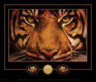 tiger-4-lsu-(2).jpg