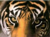 tigereyespic.jpg